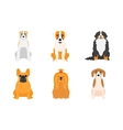 different dogs breed vector image vector image