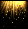 golden lights lighting effect lighting enhance vector image vector image
