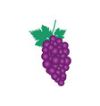 grape fruit icon design template isolated vector image