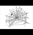 halloween spiderweb with spider isolated on vector image vector image
