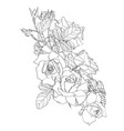 hand drawn summer vintage bouquet rustic roses vector image