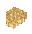 honeycomb isolated on white background hexagonal vector image vector image