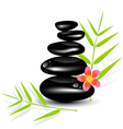 Hot Stone Massages and bamboo leaf vector image vector image