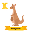 Kangaroo K letter Cute children animal alphabet in vector image vector image
