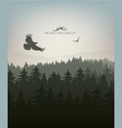 mountain forest in fog and eagle vector image vector image