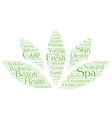 Spa word cloud in a shape of lotus vector image vector image