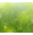 web natural background vector image vector image