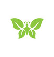 beauty butterfly icon design vector image vector image