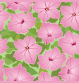 floral seamless pattern decorative flower vector image