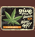 marijuana leaf on old rusty plate vector image vector image