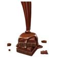 pieces of chocolate and melted chocolate sauce vector image vector image
