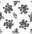 seamless pattern with black and white angelica vector image vector image