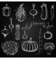 Vegetables engraving chalk sketches set vector image vector image