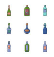 alcohol flask icons set cartoon style vector image vector image