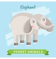 Elephant forest animals vector image vector image