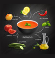 gazpacho recipe infographics layout vector image
