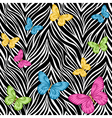 seamless background butterflies on zebra print vector image vector image