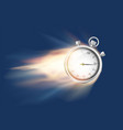 sports chronometer or stopwatch flies and burns vector image vector image