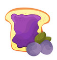 toasted bread slice of a sandwich blueberry jam vector image