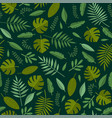 tropical plant and palm leaves seamless pattern vector image