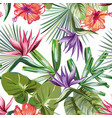 vivid tropical rainforest flowers foliage vector image vector image