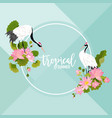 crane birds lotus flowers and leaves summer banner vector image vector image