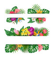 exotic flowers banner tropical leaves jungle vector image vector image