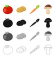 farm vegetarian diet and other web icon in vector image vector image