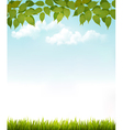 Nature background with leaves and grass vector image vector image