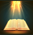 open book with magical light religion object vector image