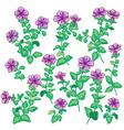 petunia set vector image vector image