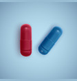 realistic capsule and a pill on a white background vector image vector image