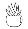 round pot aloe icon outline style vector image vector image