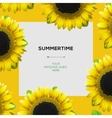 Summertime template with sunflowers background vector image