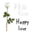 White Rose Meaning vector image vector image