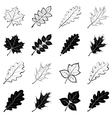 leaves of plants silhouettes set vector image