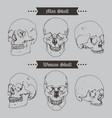 Skull vintage icon set vector image