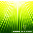 Summer sunburst on green background vector image