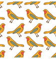 birds seamless pattern vector image vector image