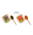 caviar realistic red and black caviar vector image vector image