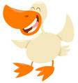 duck farm animal character vector image vector image