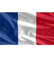 French Flag waving vector image