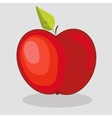 trendy red apple vector image