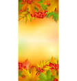 Autumn vertical banner vector image vector image