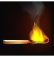 burning-match-fire-tree vector image vector image