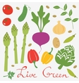 Fresh vegetables set vector image vector image