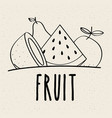 fruit fresh natural food nutrition healthy doodle vector image vector image