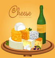 sliced cheese pieces on plate and bottle of wine vector image vector image