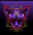 sphynx cat head esport mascot logo vector image vector image
