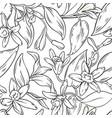 vanilla seamless pattern vector image
